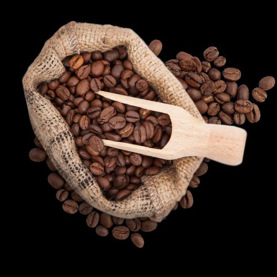 Bio Gourmet Espresso mild Bohnen 1000g, fairtrade